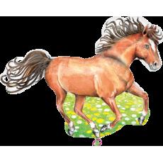 Balón Kôň na lúke US