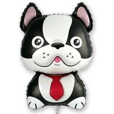 Balónik Bulldog