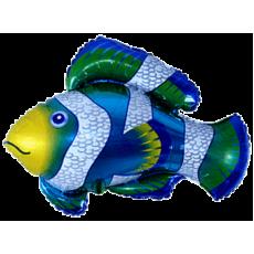Balónik Ryba - klaun