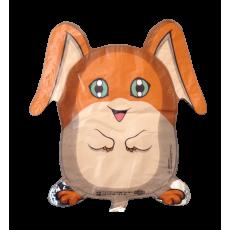 Balónik Pokémon Digimon