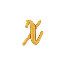 Písmeno malé zlaté X script