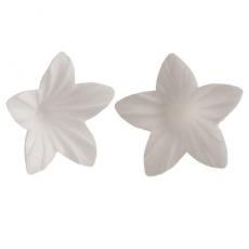 Oplátkový kvet mini biely 2 cm